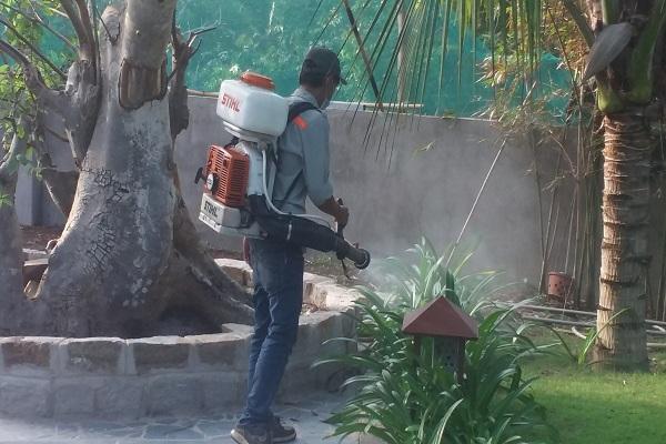 Máy phun diệt côn trùng Stilh