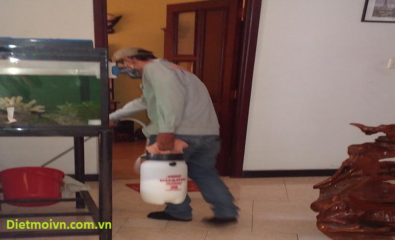 Phun thuốc diệt kiến ba khoang trong nhà