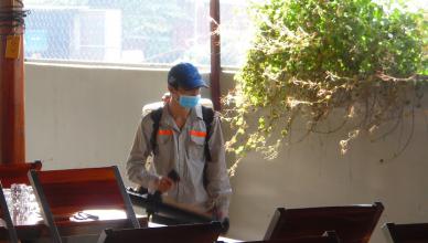 Dịch vụ diệt côn trùng tại Ninh Bình