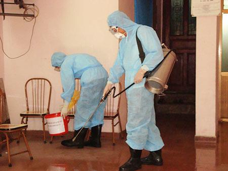 phòng chống mối công trình tại Thừa Thiên - Huế