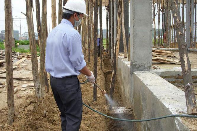 Chống mối cho công trình xây dựng