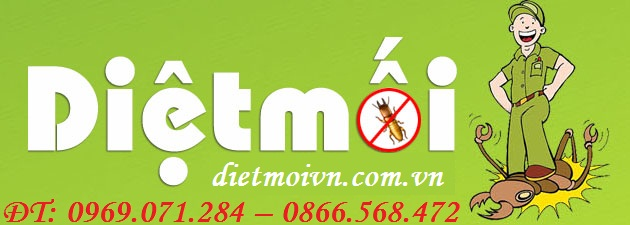 dietmoivn.com.vn