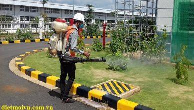 diệt côn trùng tại Hà Giang