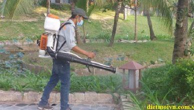 diệt côn trùng tại Tuyên Quang