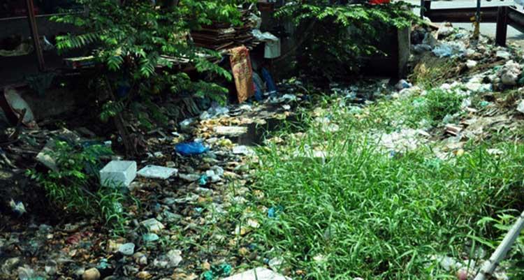 phun diệt muỗi tại Hà Nội