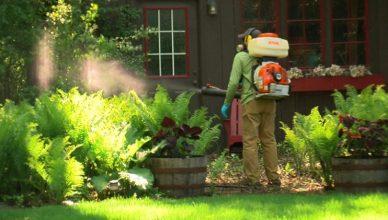 phun diệt côn trùng tại nhà