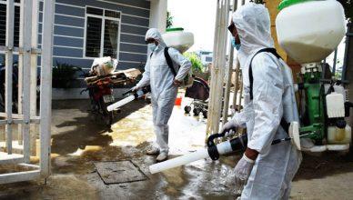 phun diệt ruồi tại Hà Nội