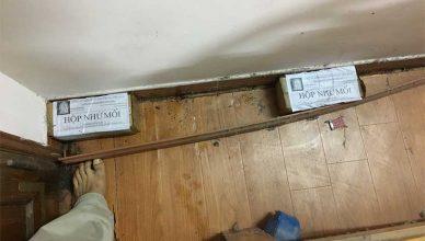 Diệt mối bằng hộp nhử mối có an toàn không