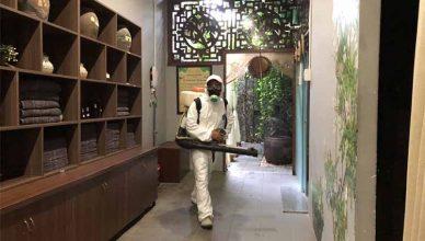 phun thuốc diệt ruồi tại Bắc Ninh