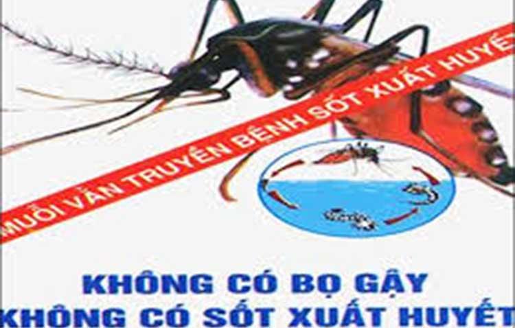 dịch vụ diệt muỗi tại Hải Phòng