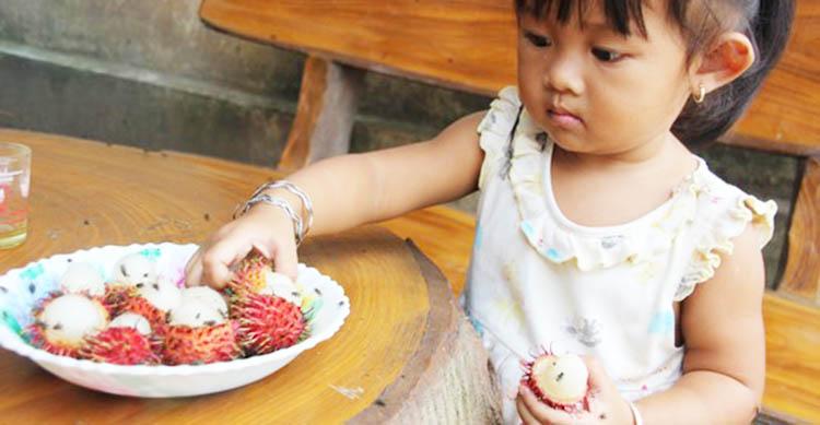 Dịch vụ diệt ruồi tại Đồng Nai